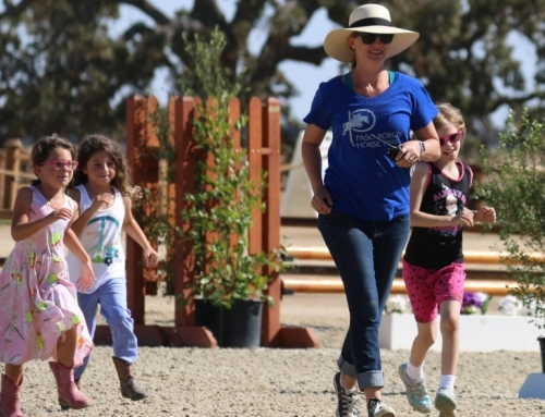 Paso Robles Horse Park Celebrates First Year – 1/16/17