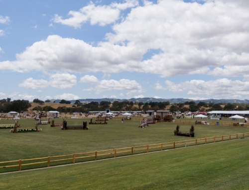 Paso Robles Horse Park Awarded Beautification of the Year