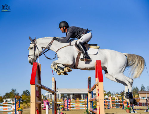 Paso Robles Horse Park Hosts Nationally-Rated USEF Shows